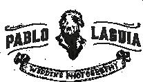 Pablo Laguía